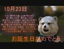 10月23日 お誕生日おめでとうございます。+運勢 #KATSUMI #危険な女神 #VTuber