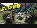 【ハイエースキャンピングカーで行く犬連れ旅】立川水仙郷(ナゾのパラダイスもあるよ!)
