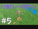 ファイナルファンタジー歴代シリーズを実況プレイ‐FF2編‐【5】