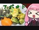 【ご飯のお供、アボカドのめんつゆワサビ和え】 「茜ちゃんが美味いと思うまで」RTA ??:??:?? WR 【謝米祭】
