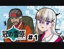 【ポケモン剣盾】美少女チャンプの伝説巡り part1【冠の雪原】