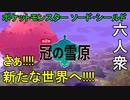 【ポケットモンスターソード・シールド】解禁!!いざ!!!「冠の雪原」へ【おおはし・お奉行】Part1