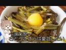 謝米祭【CeVIOキッチン】さとうささらは豪遊したい