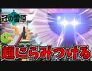 【実況】ポケモン剣盾 冠の雪原でたわむれる ガラルフリーザー