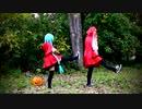 【ニッキ初音x美咲ブラックスター】Happy Halloween を踊ってみた