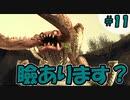 ライナリー砂漠でゲーム内一顔が怖いボスと戦う【FFCCリマスター】#11