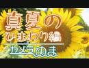 【旅行Vlog】梅雨のあじさい編 - カメラのぬま撮影旅日記
