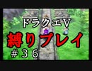 【アルカリ性】もう一度洞窟を振り返ろう。26周目の縛りプレイ!【ドラクエ5シーズン1 Part36】