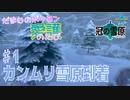 【実況】だまむのポケモン愛護のたび「冠の雪原」 #1