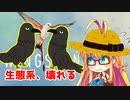 野鳥愛好家マキちゃん、生態系を創る part.3