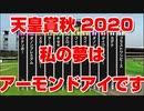 【競馬に人生】天皇賞秋 2020 私の夢はアーモンドアイです ダノンプレミアム クロノジェネシス スカーレットカラー ウインブライト フィエールマン【競馬予想 完全攻略】
