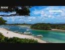 [8Kタイムラプス紀行] 沖縄 島の夏景色 | A Summer's Day in Okinawa | NHK
