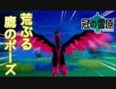 【ポケモン剣盾】いつかはクラウン【part8】