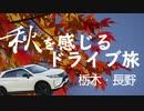 【車載】秋を感じるドライブ旅~栃木・長野に紅葉を求めて~