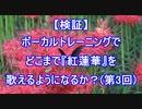 【『紅蓮華』成長日記】ボーカルトレーニングを受けて歌い方は変わるのか?(レッスン3回目)