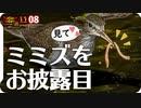 1108【ミミズを美味しそうに食べるイソシギ】驚くネコが飛び上がる。カワセミとヒヨドリ2ショット。スズメとセキレイ水浴び。サトクダマキモドキの産卵管【 #今日撮り野鳥動画まとめ 】 #身近な生き物語