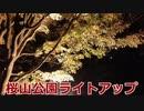 稲川写真館~桜山公園ライトアップ2020~