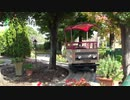 【鈴鹿サーキット】チララのフラワーワゴンに乗るあい❤のんびりお花畑の中をドライブしようwww