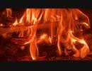 焚き火と虫の音
