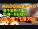 ゆっくり雑談 288回目(2020/11/12)