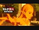 Switch新作『ゼルダ無双 厄災の黙示録』TVCM【ロングバージョン】