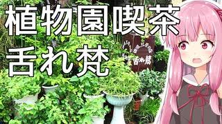 琴葉姉妹の大阪を食べようPart10「植物園喫茶 舌れ梵(とれぼん)」