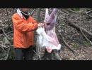 令和最初の狩猟生活(その143)