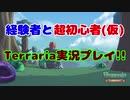 経験者と超初心者のTerraria(マスターモード)実況プレイ! Part25