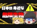 【ゆっくり解説】日本にいる身近な危険生物