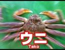 【やわらか支援】 カ ニ ト ケ ン カ 【BBPS4】