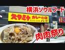 【食べ歩き動画】横浜ソウルフード★スタミナカレーのお店バーグ★肉々しいカレーをぬこが食べるだけの動画