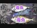 【ぴ】危険な毒魚アイゴとアオリイカで絶品魚料理!巨大天丼!