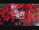【まきゅりんぬP】芝鯉【オリジナル】