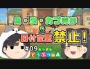 魚・虫・カブ売却&日付変更禁止の森 #9 【あつまれ どうぶつの森】