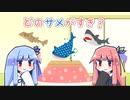 【世界サメの日】ことのは記念日! #3【VOICEROID劇場】