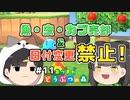 魚・虫・カブ売却&日付変更禁止の森 #11 【あつまれ どうぶつの森】