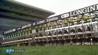 2020年11月29日 第40回 ジャパンC 最強馬はどの馬だ!?