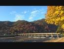 桂川サイクリング【淀城跡~嵐山渡月橋】