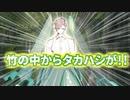 【ポケモン剣盾】タカハシのランクハッシ【テッカグヤ】