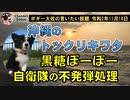 沖縄の黒糖ポーポー ボギー大佐の言いたい放題 2020年11月18日 21時頃 放送分