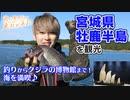 [君に見せたい東北がある] 牡鹿半島の日の出から夕日まで海の魅力たっぷりの旅♪ | NHK