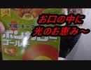 大塚食品 「ポンカレー太陽の恵みキーマカレー」を食べてみた。