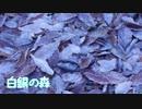 【第12回東方ニコ童祭Ex】白銀の森 2020 Ver.【東方風自作曲】