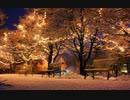 クリスマス・イブ(Shun Oba arr.)を歌ってみた