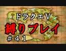 【ドラクエ5 縛りプレイ】新しい縛りとペナルティ執行!そしてマーサの故郷へ…。Part41【アルカリ性】