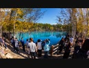 [8Kタイムラプス紀行] 丘のまち 北海道 美瑛   白ひげの滝 青い池   Hills of Biei in Hokkaido   NHK
