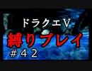 【ドラクエ5 縛りプレイ】エルヘブンへ向けて洞窟抜けてきましょう!Part42【アルカリ性】