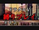 【ドラクエ5 縛りプレイ】天空の塔までいざ!目指すは天空城!Part43【アルカリ性】