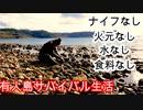【ぴ】サバイバル生活 石器づくりと火起こし編 野草 巻貝