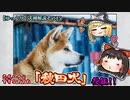 【ゆっくり犬種解説】その15「秋田犬」後編